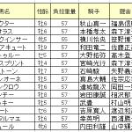 【東京大賞典2015】ホッコータルマエ・コパノリッキー・サウンドトゥルー3強で消える馬は?【予想】