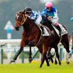 【シンザン記念2016予想】データ分析| 牝馬ラルクとジュエラーに注目!