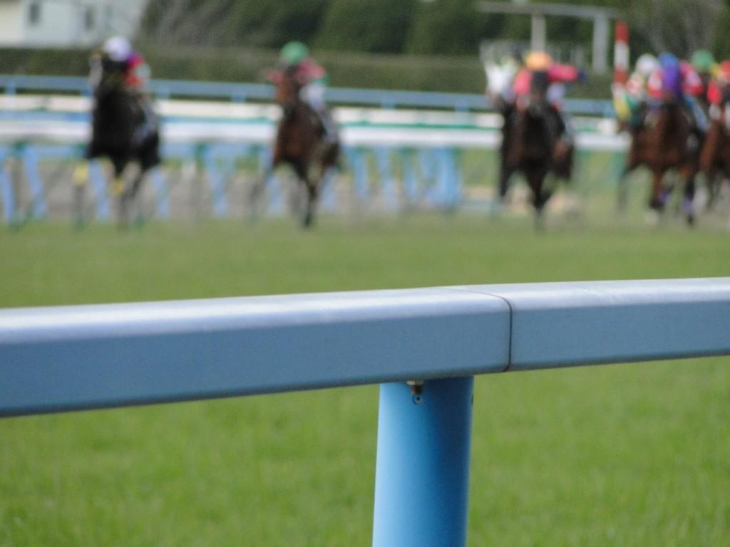 【阪神大賞典2016】最終予想|人気馬シュヴァルグランは不安要素多数!実績馬から勝負!