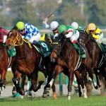 【桜花賞2016】展望|出走予定馬を3つ星で評価!