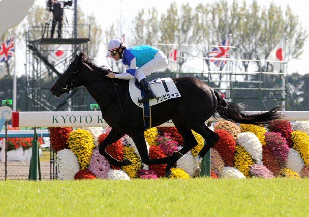 【大阪杯2016】予想|有力馬を脅かすアンビシャスなどの4歳世代!消し馬候補を発表!