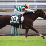 【福島牝馬ステークス2016】最終予想|シャルールが大外枠で波乱ムード!ならばオークス・秋華賞で結果を残しているあの馬から!!