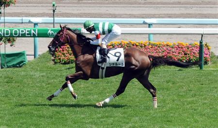 【福島牝馬ステークス2016】予想|シャルールとアースライズにベテラン勢が襲いかかる!