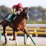【NHKマイルカップ2016】予想|ロードクエストがメジャーエンブレムに牡馬のプライドを見せる!