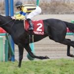 【京王杯スプリングカップ2016】最終予想|安田記念をかけてマイラーvsスプリンター!