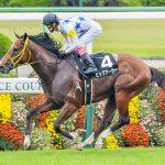【セントウルステークス2016】予想|高松宮記念の勝ち馬ビックアーサーは休み明け大丈夫か!?