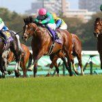 【朝日杯セントライト記念2016】予想|菊花賞に向けてディーマジェスティがどのような競馬をするか!?