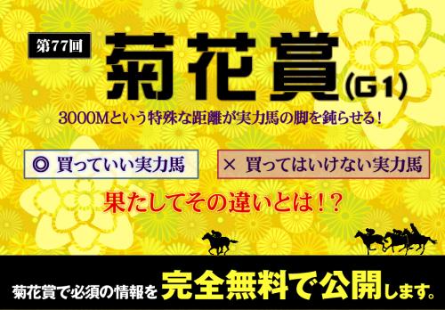 菊花賞2016競馬スピリッツ