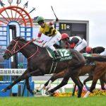 【京王杯2歳ステークス2016】最終予想|外国産馬のレヴァンテライオンに注目!!