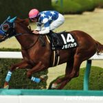 【武蔵野ステークス2016】最終予想|ノボバカラとR・ムーア騎手の安定感で勝負!!