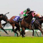【香港スプリント2016】出走予定馬|予想|予想オッズは5.1倍(単勝)ラッキーバブルズがシャティン競馬場で輝くか!