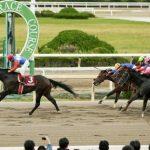 【全日本2歳優駿2016】予想|出走予定馬|予想オッズ7.2倍ローズジュレップ◎で勝負!買い目発表!
