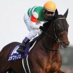 【香港カップ2016】出走予定馬|予想|予想オッズ2.0倍(単勝)モーリスは鉄板!?