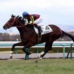 安田記念2018|出走予定馬|全馬診断|ドバイGⅠを制したリアルスティールが復権へ!!黄金世代の生き残りがプライドを見せれるか!?