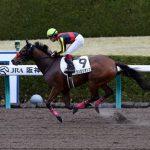 【エンプレス杯2017】最終予想|ワンミリオンに地方馬リンダリンダが襲い掛かれるか!?