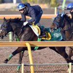 【中山牝馬ステークス2017】出走予定馬|予想|予想オッズ2.6倍マジックタイムが勝利して有終の美で競争馬のキャリアを終える!!