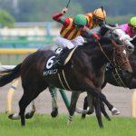 【ダービー卿チャレンジトロフィー2017】最終予想|キャンベルジュニアを軸に馬連5点で勝負!