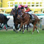 【フィリーズレビュー2017】出走予定馬|予想|予想オッズ3.6倍カラクレナイがM・デムーロ騎手を背に桜花賞へ!!