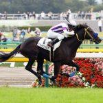 【弥生賞2017】最終予想|コマノインパルスが皐月賞馬に名乗りを上げる!!