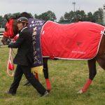 【アンタレスステークス2017】出走予定馬|予想オッズ1.8倍グレンツェント3連勝で帝王賞に殴り込み!