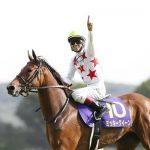 【阪神牝馬ステークス2017】出走予定馬|予想|予想オッズ2.2倍ミッキークイーン、牝馬限定戦なら一枚上か!?