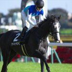 【オークス2017牝馬優駿】出走予定馬|アドマイヤ軍団かそれとも距離不安なリスグラシューか!?