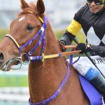 【香港スプリント2017】最終予想|日本馬レッツゴードンキと香港馬2頭で3連複1点勝負!!