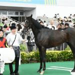 【神戸新聞杯2017】出走予定馬|予想|予想オッズ6.5倍ダンビュライト重賞初勝利へ!!