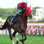 【中京記念2017】最終予想|マイネルアウラートを軸に馬連5点勝負!!