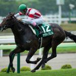 【北九州記念2017】出走予定馬|予想|アクティブミノルがサマースプリントチャンピオンを狙う!!