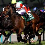 【関屋記念2017】最終予想|ダノンリバティを軸に馬連5点勝負!!