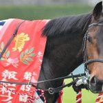 【府中牝馬ステークス2017】最終予想|クイーンズリングを軸にワイド5点勝負!!