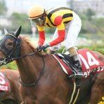 【京都金杯2018】出走予定馬|有力馬の中で追い風のラビットランに注目も鞍上に不安あり・・・