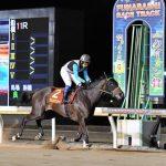 【TCK女王盃2018】最終予想|JBCレディスクラシック2着馬プリンシアコメータを軸に馬連5点勝負!!