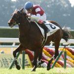 【シルクロードステークス2018】出走予定馬|GⅠ制覇を目標にスピード能力が高いファインニードルに注目!!
