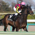 【中山牝馬ステークス2018】出走予定馬|戸崎騎手と再結成するワンブレスアウェイ!!好相性のコンビなので見直しの一戦!!