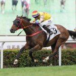 【クイーンエリザベス2世カップ2018】最終予想|香港ダービー馬ピンハイスターを軸に3連複4点勝負!!