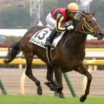 オークス2018|出走予定馬|全馬診断|3歳牝馬3冠達成へ!!桜花賞馬アーモンドアイが2冠目に挑む!!