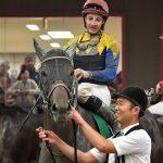 レパードステークス2018|出走予定馬|有力馬診断|未来のGⅠ馬へ!!世代トップクラスの力を持つグレートタイムが重賞獲りへ!!C・ルメール騎手が北海道から遠征に出る緊急事態!?