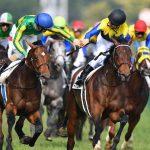 京都記念2019|出走予定馬|有力馬診断|ダービー馬マカヒキが復活を賭けて登場!!この時期の重賞レースは「仕上がり」が重要!!