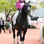 根岸ステークス2019|最終予想|東京競馬場の開幕を告げるダート重賞は中央ダートGⅠフェブラリーステークスに向けての1戦!!混戦模様の中、本命はあの穴馬を指名!!