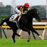 きさらぎ賞2019|出走予定馬|有力馬診断|関西の出世レースに大器の可能性が高い馬が多数出走!!前走で一気に才能を開花させたアガラスが登場!