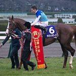 共同通信杯2019|出走予定馬|有力馬診断|2歳王者アドマイヤマーズに素質馬が挑む!!まるでGⅠのようなメンバー構成、クラシック候補に名乗りを上げるのは!?