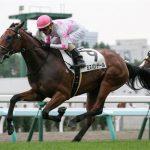 京都牝馬ステークス2019|最終予想|2月16日(土)京都11R|有力牝馬始動、ただ有力馬の状態はマチマチで荒れる可能性あり!!