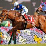 ユニコーンステークス2019|データ予想|混戦模様のダート重賞を制する馬は!?データ的に最も勝ち馬に近い馬は人気馬のあの馬!!