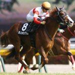 エプソムカップ2019|データ予想|データが支持する馬はミッキースワローでもレイエンダでもなく、あの人気馬!!