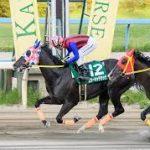 石川ダービー2019|最終予想|6月4日(火)金沢11R|北日本新聞杯組の3強対決が濃厚か・・・勝ち馬スターキャデラックに逆転出来る馬はいる!!