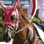 ベルモントステークス2019|最終予想|6月9日(日)アメリカ・ベルモントパーク11R|日本馬マスターフェンサー参戦!!カントリーハウス不在でアメリカ3冠最終は誰の手に!?
