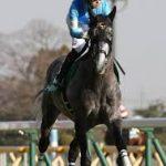 七夕賞2019|データ予想|ディープインパクト産駒が好相性!人気馬が信頼出来ないレース!?