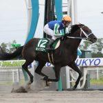 東海ステークス2020|最終予想|1月26日(日)京都11R|京都開催が展開に影響する!?混戦模様なので追い切りの動きが良いアノ馬から勝負!!